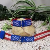 D11. American style obojok