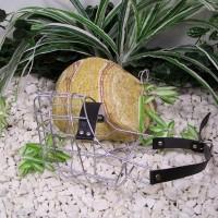KK1. Kovový košík pitbull – fenka