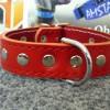 červený kožený vybíjaný obojok koženný obojok vybíjaný ok036-1