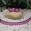 motýlikový ružový obojok